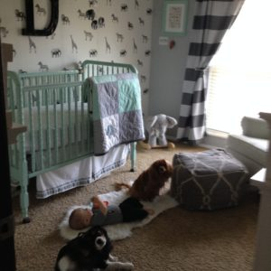 Nursery Tour- safari/ elephant themed. Mint, grey, white, black athomewithashley.com
