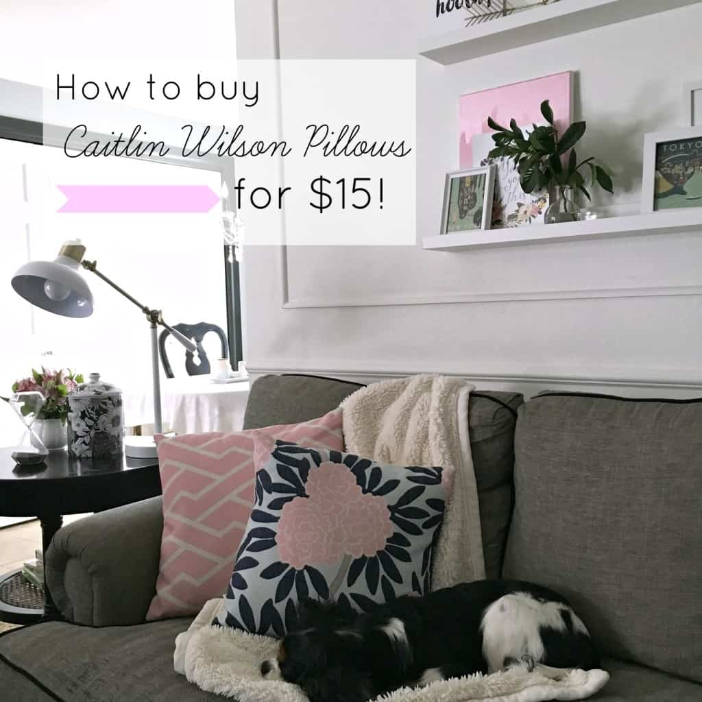 How to buy Caitlin Wilson pillows for $15!