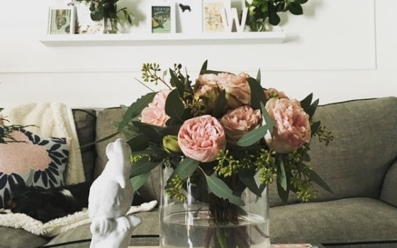 How to buy Caitlin Wilson pillows on a budget