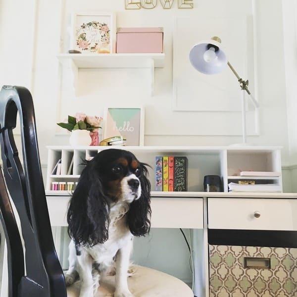 living room desk (14)