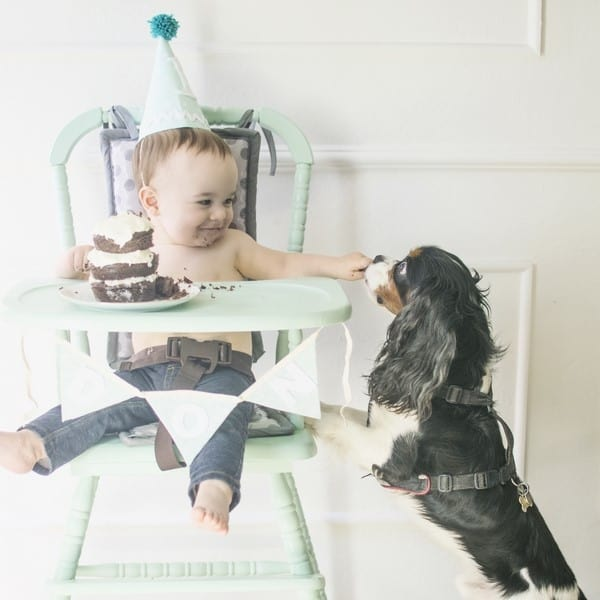10 tips for getting perfect one year old photos (25)