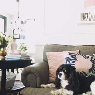 home décor low budget