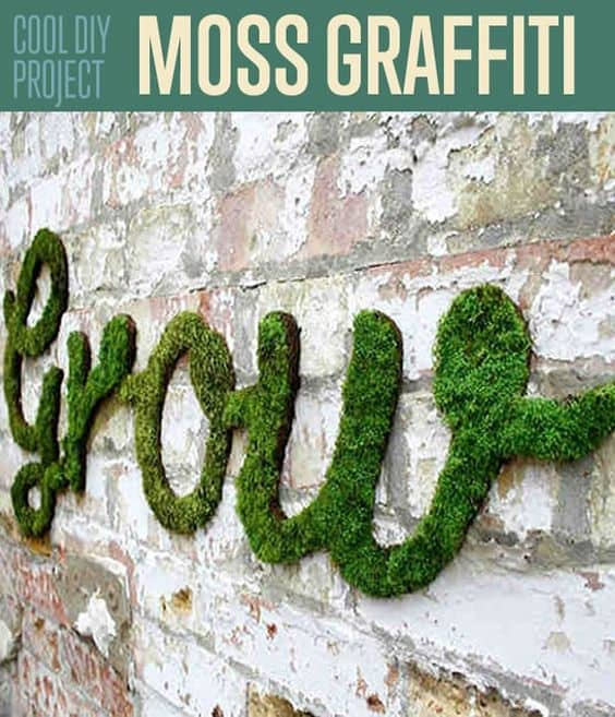 deck art- how to hang on siding without damage. Moss graffiti (6)