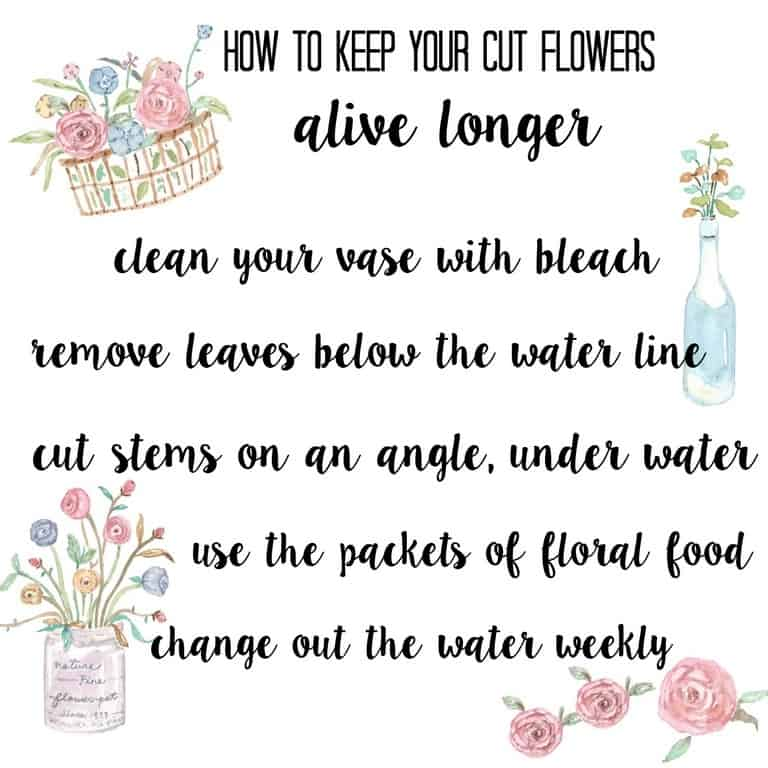 how-to-keep-your-flowers-alive-longer