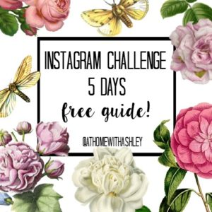 Instagram challenge tricks grow massive following organic presence techniques strategies more rapidly followers easy increase best ways