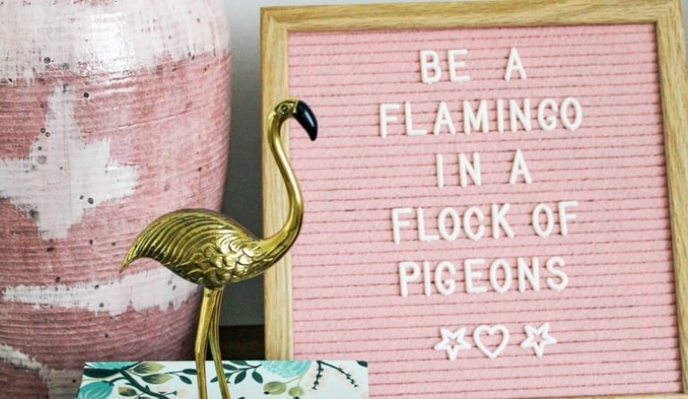 The Best Letterboard Accessories