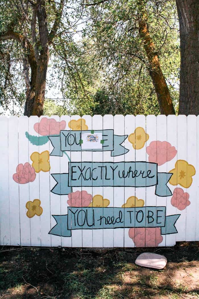 How To Paint A Flower Mural On A Fence Google Search Garden Mural Fence Art Flower Mural